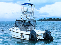 Deep Sea Sport Fishing in Las Terrenas, Samana Dominican Republic. Do the Best Sport Fishing in Las Terrenas.